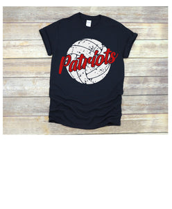Patriots with Distressed Volleyball