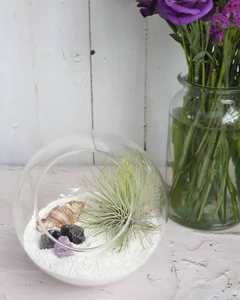 Personalised Terrariums & Planters