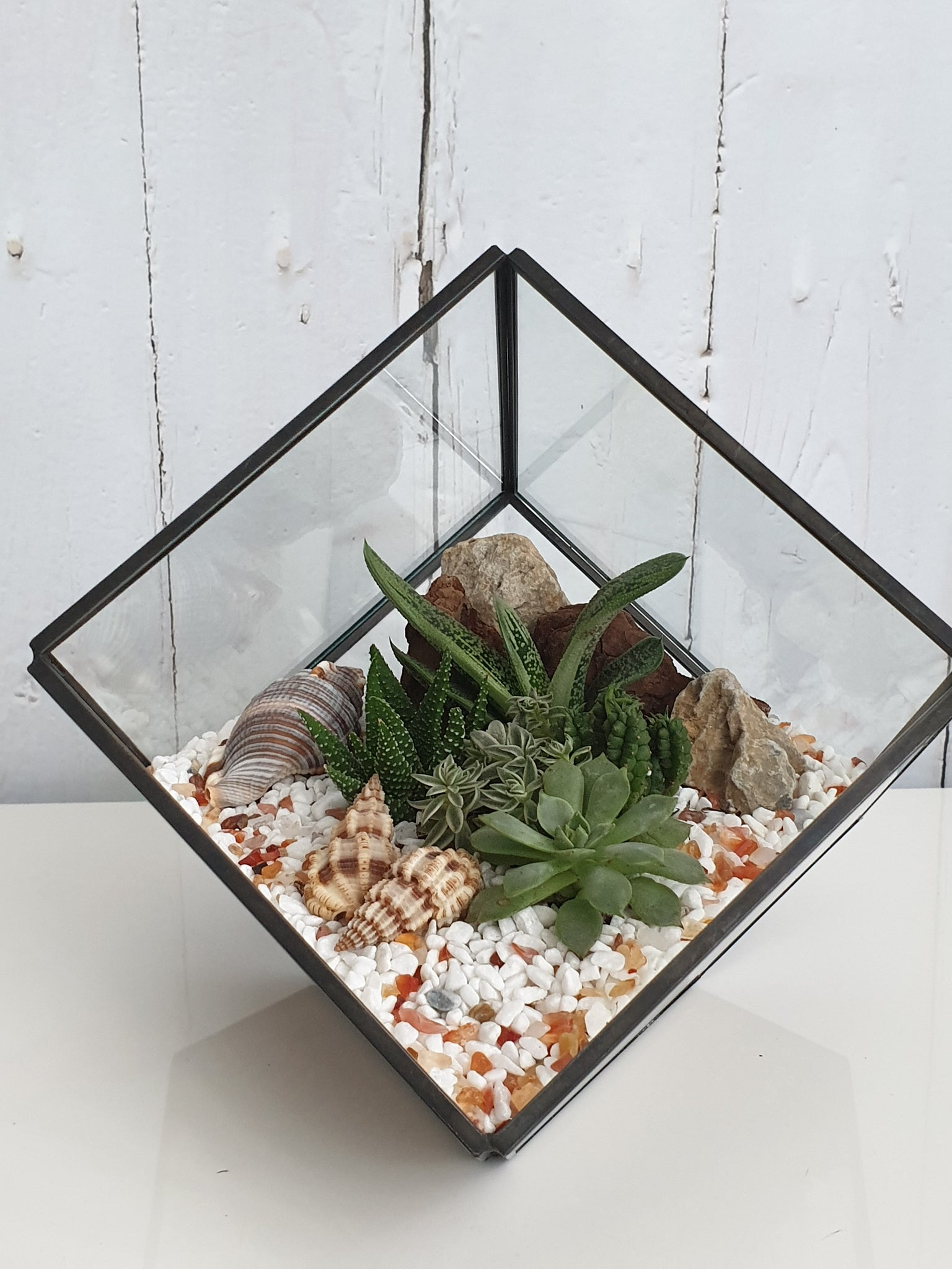 Personalised geometric terrarium