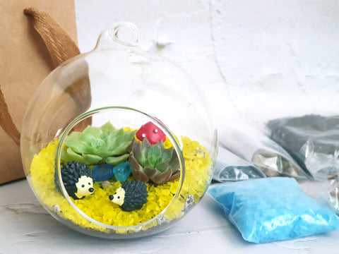 Children's Terrarium Diy Kit