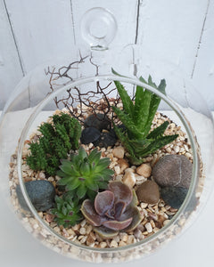 Personalised glass ball terrarium
