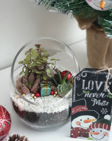 Personalised Christmas terrariums