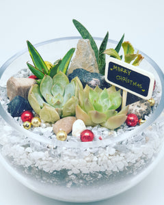 Personalised Christmas terrarium