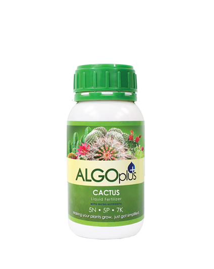 Cactus and Succulent - Liquid Fertilizer with Magnesium and Micro-Nutrients 250ml - Algoplus