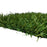 Dana Point - 46oz Face Weight - Full Size Artificial Grass Turf Roll, (USA Made)- Synthetic Grass Lawn