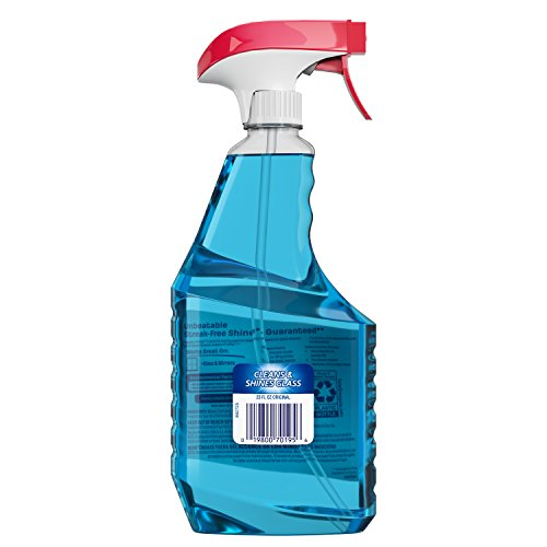 9b05b19493a ... Windex Glass Cleaner Trigger Bottle