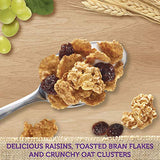 Kellogg's Raisin Bran Crunch, Breakfast Cereal, Original, Good Source of Fiber, Family Size, 24.8 oz Box (Pack of 3)