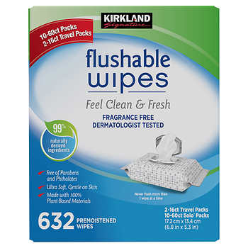 Kirkland Signature Moist Flushable Wipes, 632 Wipes