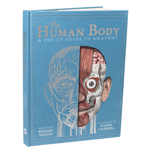 The Human Body: A Pop Up Guide to Anatomy