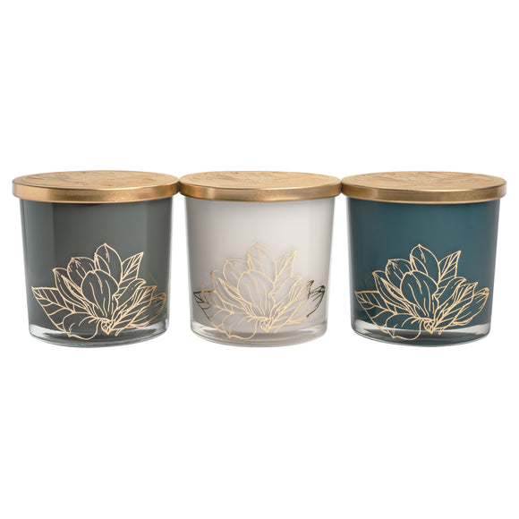 Bellevue Luxury 20 oz Candles, 3-pack