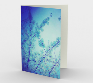 """Blue Spring"" Cards (set of 3)"