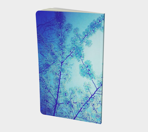 Blue Spring Notebook (small)