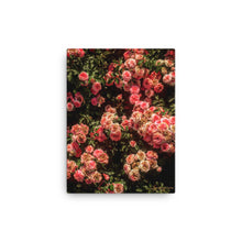 Rose Garden Canvas