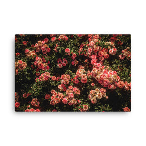 "Rose Garden Canvas (24""x36"")"