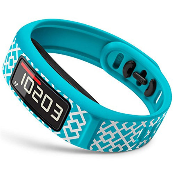 Garmin Vivofit2 Smart Band