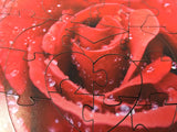 Raindrops on a Red Rose - 59 Piece Mini Valentine's Day Wooden Puzzle