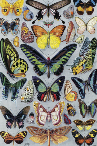 Vintage Butterflies (77 Pieces) Mini Wooden Photo Puzzle