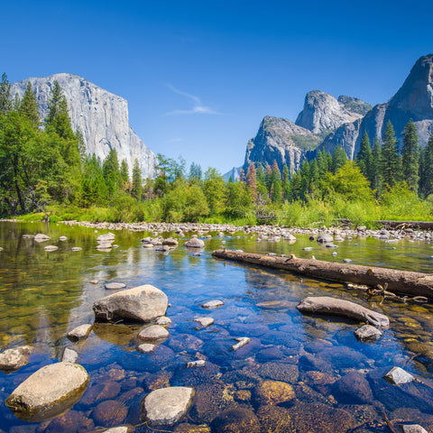 Yosemite Valley in Summer - 245 Piece Wooden Jigsaw Puzzle