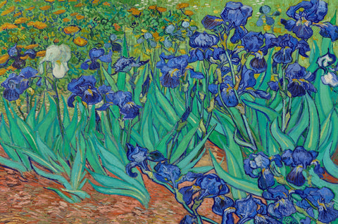Irises by Vincent Van Gogh (50 Piece Mini Wooden Jigsaw Puzzle)