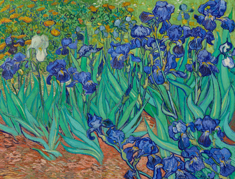 Irises by Vincent Van Gogh (464 Piece Wooden Jigsaw Puzzle)