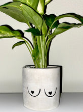"Load image into Gallery viewer, ""Tits Up"" Concrete Planter - GrungeVogue"