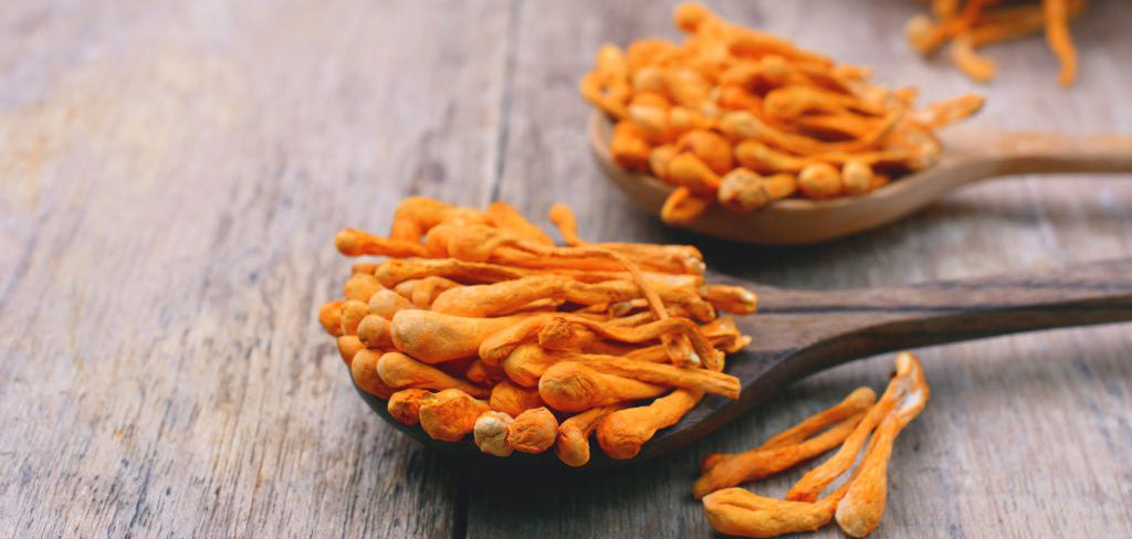 5 Amazing Benefits of Cordyceps Mushroom Extract