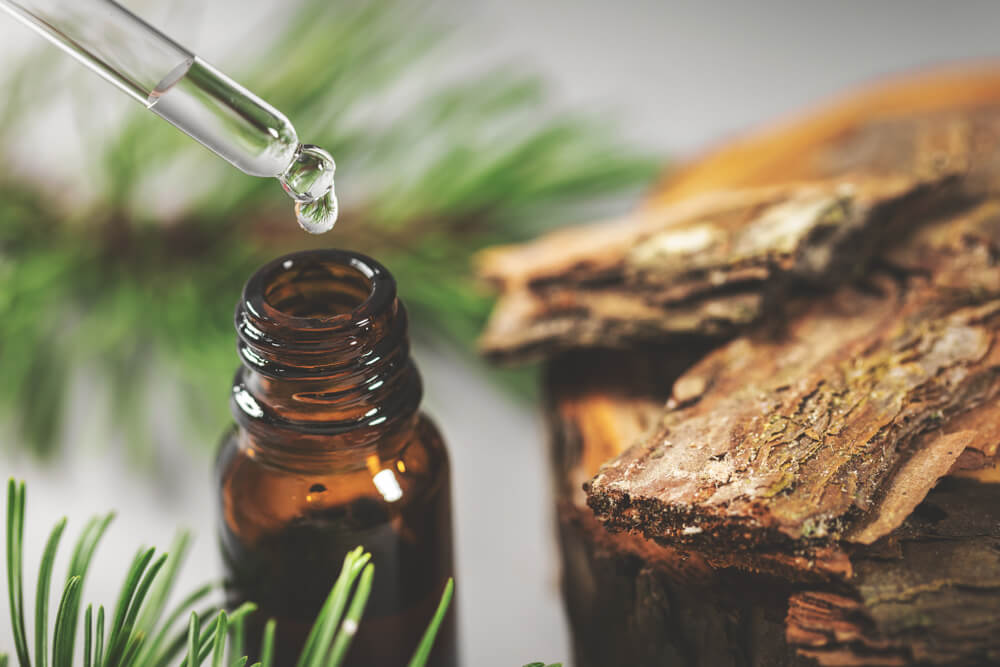 Facts You Need To Know About Tinctures