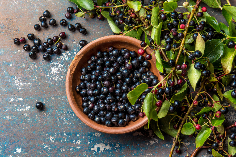 Six Fascinating Health Benefits of the Maqui Berry