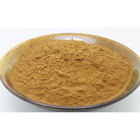 Image of Coriolus Versicolor 15:1 Extract Powder