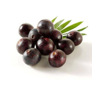 Acai Berry 10:1 Organic Extract Powder