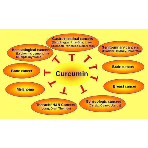 Image of Curcumin Extract 95% + Piperine Extract 1% 100 Capsules