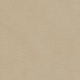IMG Trend Sand leather
