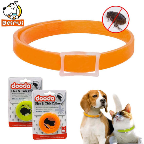 Cat Dog Flea Collar Anti insect - holicpet