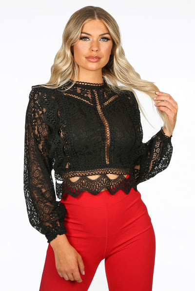 Black Lace Long Sleeve Crochet Mesh Crop top - Dylan