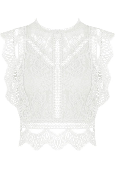 Cream Lace Crochet Mesh Crop top - Delilah - storm desire