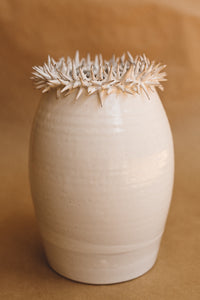 crown of thorns vase