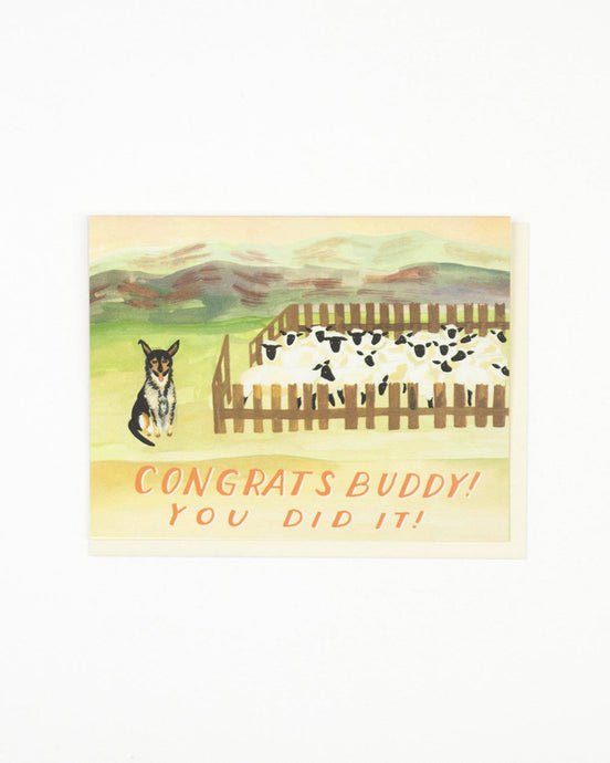 sheepdog congrats card