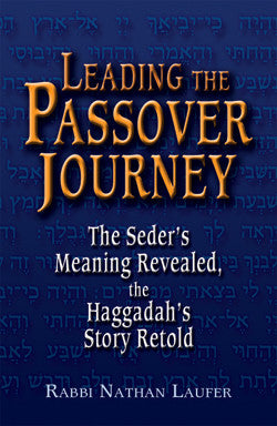 Leading the Passover Journey-Rabbi Laufer