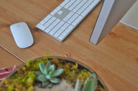 desk with imac and keyboard with succulent plant