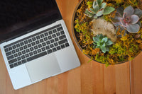 desk with mackbook pro and succulent