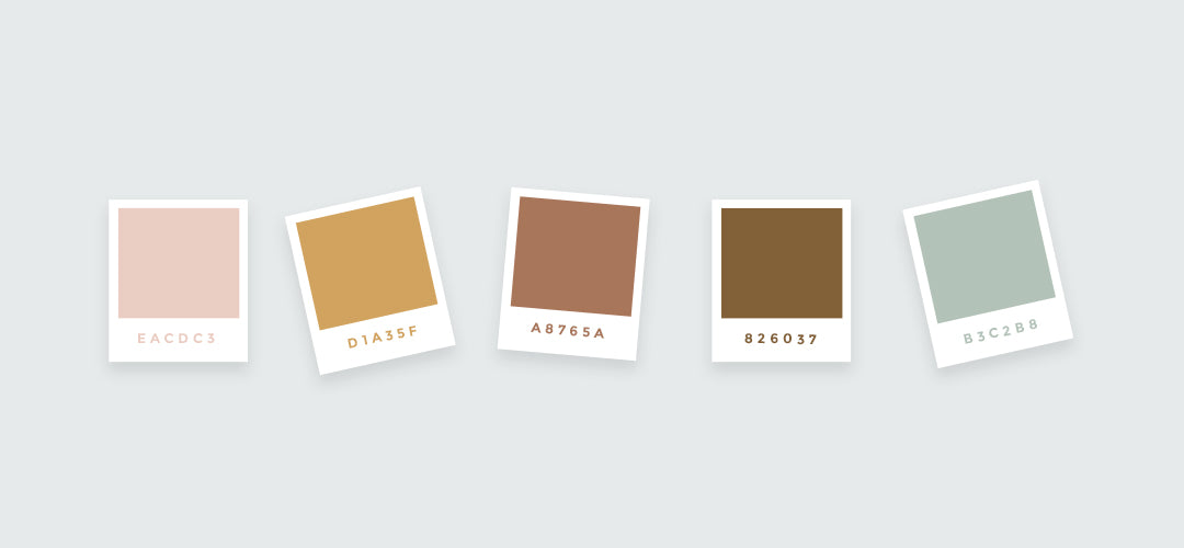 Color palette for talua with blush brown gold and sage