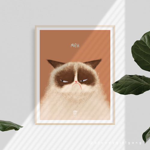 Meh Grumpy Cat Art Print