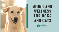 Aging and Wellness For Dogs and Cats