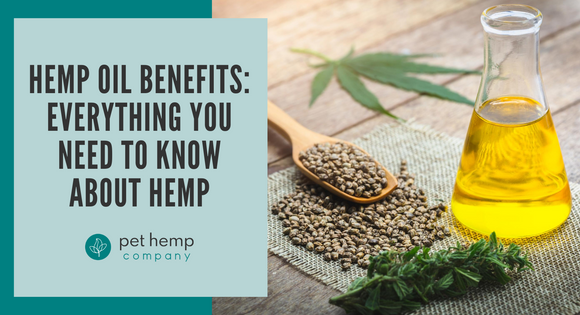 Hemp Oil Benefits: Everything You Need To Know About Hemp