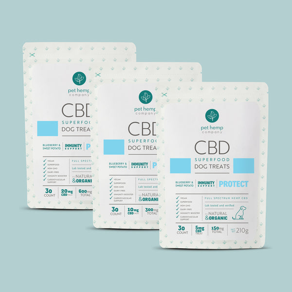 Bundle & Save: 3 CBD Dog Treats + PROTECT Immunity Support