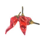 Divina Calabrian Chili Peppers, 6 lb