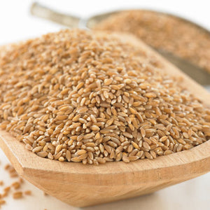 Bluebird Grains Whole Grain Organic Emmer Farro, 25 lb