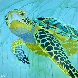 A Friendly Face - Sea Turtle Art by Dora Knuteson