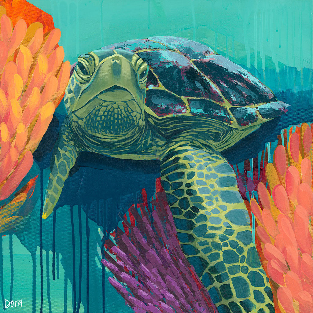 """Shell Shock"" Sea Turtle Art by Dora Knuteson"