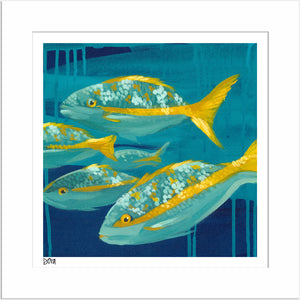 """Snap To It"" Fish Artwork by Dora Knuteson"